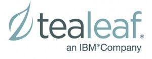 Masterclass de Tealeaf en IBM
